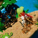 Photo d'une mise en scène de playmobile sur le thème de l'île au trésor ou l'île déserte