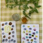 exemple en image de ce qu'il est possible de faire avec des plantes. Tests de couleurs sur papier